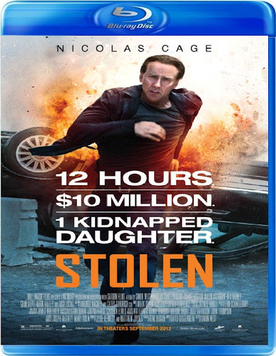 Stolen 2012 Dual Audio [Hindi Eng] BRRip 480p 300mb