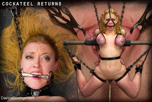 device-bondage-porno