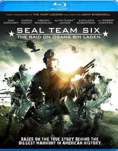 Seal Team Six The Raid on Osama Bin Laden 2012 Hindi Dubbed Dual BRRip 300mb ESub
