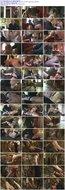 Der schwarze Dorn Dog Training School German XXX DVDRip x264-CHiKANi